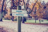 stock photo of boring  - Retro style image of a signpost in a park with arrows pointing two opposite directions towards Boring and Exciting - JPG