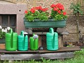 Range Of Plastic Watering Cans