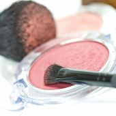 makeup and cosmetic brush