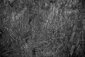 old wood background abstract old  textures