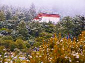 Chongu monastery in Yading