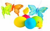 Easter Eggs, Petite Chicks And  Butterfly On A White Background