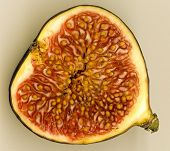 Internal cross section view of a fig fruit