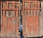 Old wooden back yard door, front view shot