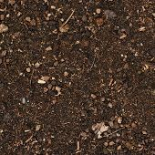 Earth covered with mulch