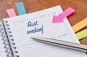 Daily planner with the entry Quit smoking