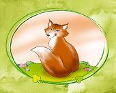 Astute red fox