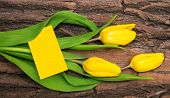 Fresh Yellow Tulips On A Natural Wooden Board