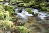 Brook flowing