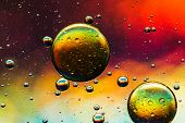 Multicolored oil and water abstract