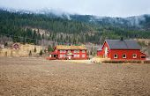 Rural Norwegian Landscape With Red Wooden Houses