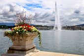 Jet D'eau On Lake Geneva, Switzerland With Flowers In The Foreground