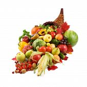 stock photo of cornicopia  - autumn cornucopia  - JPG