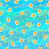 picture of frangipani  - Seamless background of tlowers frangipani in water - JPG
