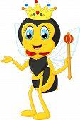 foto of bee cartoon  - Vector illustration of Cartoon queen bee presenting - JPG