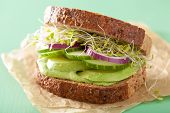 foto of alfalfa  - healthy rye sandwich with avocado cucumber alfalfa sprouts - JPG