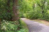 Greenway Nature Trail