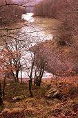River In Jungle Of Irati. Navarre, Spain