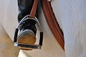 Riding boot in stirrup