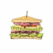 Vector Colored Sandwich Drawing, Isolated On White Background Colorful Food Sketch. Colorful Illustr poster