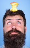Man Handsome Hipster Long Beard Almost Eaten Apple Stump On Head As Target. Live Target Concept. Hip poster