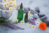 aromatherapy oil with fresh herbs and flowers - alternative medicine poster