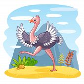 Ostrich Is Walking Along A Sandy Glade. poster