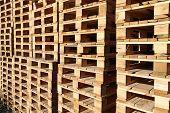 Detail Of Stock Wood Pallet Under Sun Light