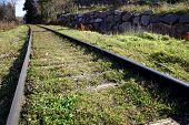 Railroad Leading Into A Rural Area