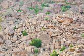 pic of dogon  - Dogon village in Mali - JPG