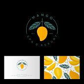 Mango Spa, Resort Or Hotel Logo. Mango Emblem With Leaves. Identity, Business Card With Mango Patter poster
