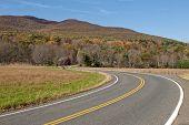 Road in Catskill Mtn