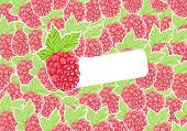 Vector raspberry with group of berry on background
