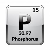 Phosphorus Symbol.chemical Element Of The Periodic Table On A Glossy White Background In A Silver Fr poster