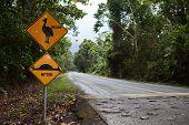 cassowari sign endangered species needs nature conservation and protection flightless bird Queensland Australia