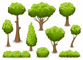 Cartoon Bush And Tree Set. Vector Trees And Bushes Isolated On White Background, Nature Green Forest poster
