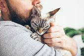 Close-up Of Beard Man Who Holds His Cute Purring Devon Rex Cat. Muzzle Of A Glad And Happy Cat. Love poster
