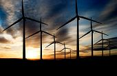 picture of wind-turbine  - Wind power landscape at sunset on a flat horizon - JPG