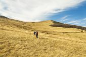 Hiking Mountains Life Style Passion Hobby Two Person Walk Through Highland Pastures Picturesque Scen poster
