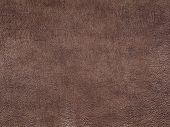 Genuine Brown Cattle Leather Texture Background. Macro Photo poster