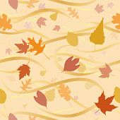 Autumn Wind Background