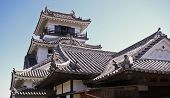pic of shogun  - A sweeping Japanese castle in Kochi Prefecture - JPG