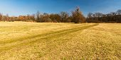 Early Springtime Meadow With Trees Around, Footpath And Clear Sky In Early Spring Chko Poodri In Cze poster