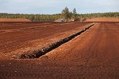 stock photo of boggy  - Turf extraction field prepared for turf collection and removal - JPG