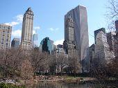 New York Central Park Scene