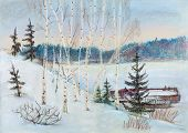 Birches On The Bank Of Volga