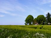picture of farm-house  - in a fertile surrounding - JPG