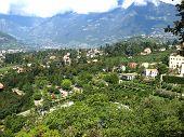 tyrolean Garden