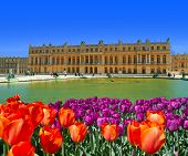 stock photo of versaille  - a view of versailles paris with flower - JPG