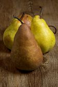Pear Nature
